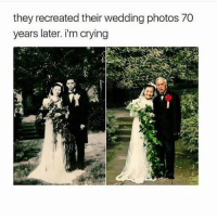 Beautiful, Crying, and Memes: they recreated their wedding photos 70  years later. i'm crying WOW THIS IS BEAUTIFUL 70YEARS REALLOVE SORARE
