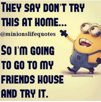 Friends, Funny, and Home: THEY SAY DON'T TRY  THIS AT HOME..  @minionslifequotes  SO I'M GOING  TO GO TO MY  FRIENDS HOUSE  AND TRY IT.  DespicableMeMinions.org Minions Quotes Top 370 Funny Quotes With Pictures Sayings 61