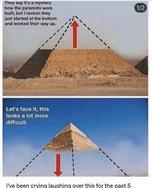 Crying, Mystery, and Been: They say it's a mystery  how the pyramids were  built, but I reckon they  just started at the bottom  and worked their way up.  1/2  Let's face it, this  looks a lot more  difficult.  i've been crying laughing over this for the past 5 crying and laughing