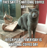 Bitch, Instagram, and Memes: THEY SAY IT'S NATIONAL COFFEE  DAY  BITCH PLEASE, EVERYDAY IS  NATIONAL COFFEE DAY Black Rifle Coffee Company  - check out our memes instagram @coffee__memes!     #coffeememes #BlackRifleCoffeeCompany