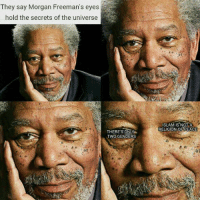 Morgan Freeman: They say Morgan Freeman's eyes  hold the secrets of the universe  THERES ONLY  TWO GENDERS  ISLAM IS NOT A  RELIGION OF PEACE