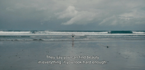 Can, They, and You: They say you can find beauty  in everything, if you look hard enough