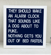 Clock, Alarm, and Alarm Clock: THEY SHOULD MAKE  AN ALARM CLOCK  THAT SOUNDS LIKE  A DOG ABOUT TO  PUKE.  NOTHING GETS YOU  OUT OF BED FASTER.