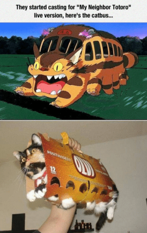"""Tumblr, Blog, and Cosplay: They started casting for """"My Neighbor Totoro""""  live version, here's the catbus... epicjohndoe:  My Neighbor Totoro Cosplay"""