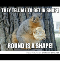 Round Is A Shape: THEY TELL ME TO GETIN SHARE  ROUND IS A SHAPE!  Funny Pictures on  www.LeFunny.net