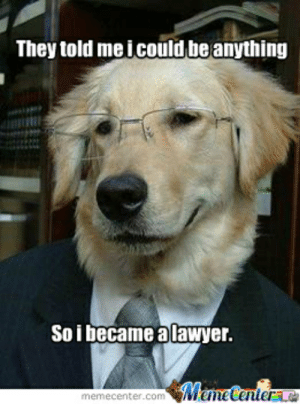 Lawyer by pickaflick - Meme Center: They told me icould be anything  Soi became a lawyer.  Meme Centera  memecenter.com Lawyer by pickaflick - Meme Center