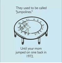 Jumped, Mom, and Back: They used to be called  Jumpolines.  Until your mom  jumped on one back in  1972.