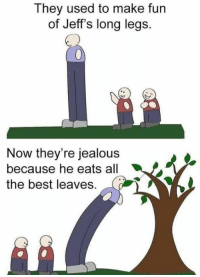 Jealous, Best, and All The: They used to make fun  of Jeff's long legs.  Now they're jealous  because he eats all  the best leaves.