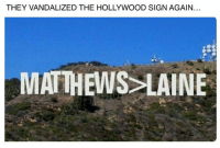 Vandalizers: THEY VANDALIZED THE HOLLYWOOD SIGN AGAIN.  MATTHEWS LAINE