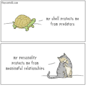 Relationships, Irl, and Me IRL: theycantalk.com  my shell protects me  from predators  o2  my personality  protects me from  meaningful relationships Me irl