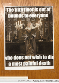 "Dumbledore, Memes, and Death: Thiefiti ooris out of  bounds te everyone  ho does notwish to di  a most painful death  Like this? You'll hate  MUGGLENET MEMES.COM <p>One of the floors at the library is closed. Dumbledore offered his usual stern warning to potential lock-pickers. <a href=""http://ift.tt/1FcYHPX"">http://ift.tt/1FcYHPX</a></p>"