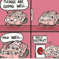 Memes, 🤖, and Wells: THINGS ARE  GOING WELL.  700 WELL...  SELF  DESTRUCT