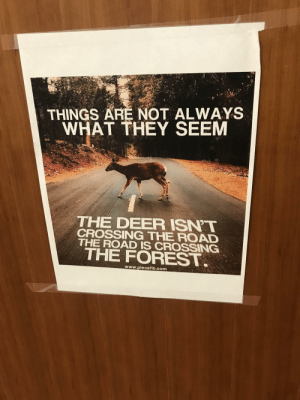 Deer, Saw, and Tumblr: THINGS ARE NOT ALWAYS  WHAT THEY SEEM  THE DEER ISN'T  CROSSING THE ROAD  THE ROAD IS CROSSING  THE FOREST  www.piecefit.com awesomacious:  I saw this on a professors door, it was amazing