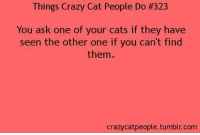 Cats, Crazy, and Memes: Things Crazy Cat People Do #323  You ask one of your cats if they have  seen the other one if you can't find  them  crazycatpeople.tumblr.com
