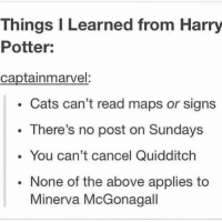 ^EL^: Things I Learned from Harry  Potter:  captainmarvel:  Cats can't read maps or signs  There's no post on Sundays  You can't cancel Quidditch  None of the above applies to  Minerva McGonagall ^EL^