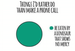 Introvert, Phone, and Tumblr: THINGS I'D RATHER DO  THAN MAKE A PHONE CALL  BE EATEN BY  ADINOSAUR  THAT SHOWS  NO MERCY introvertunites:    If you're an introvert, follow @introvertunites.