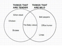 "Jesus, Chicken, and Http: THINGS THAT  ARE TENDER  THINGS THAT  ARE MILD  Sirlon steak  Bell peppers  Chicken  The Baby Jesus Office humor  Bruises  Limes <p>Holy Infant via /r/MemeEconomy <a href=""http://ift.tt/2ka1hVd"">http://ift.tt/2ka1hVd</a></p>"