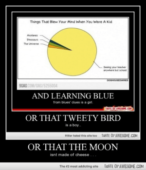 Or That The Moonhttp://omg-humor.tumblr.com: Things That Blew Your Mind When You Were A Kid  Airplanes  Dinosaurs  The Universe  Seeing your teacher  anywhere but school.  DOGHOUSEDIARIES  9GAG COM/GAG/5255004  AND LEARNING BLUE  from blues' clues is a girl.  TASTE OF AWESOME.CON  OR THAT TWEETY BIRD  is a boy.  TASTE OF AWESOME.COM  Hitler hated this site too  OR THAT THE MOON  isnt made of cheese ...  TASTE OF AWESOME.COM  The #2 most addicting site Or That The Moonhttp://omg-humor.tumblr.com