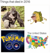 (y) Pokémon Go Memes: Things that died in 2016  Shitheadsteve  The United States (y) Pokémon Go Memes