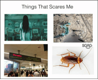 Lazy, Meh, and Memes: Things That Scares Me  SCAG  No Train Servics  Maria ay WAHHH SO SCARY!!! (Sgag admin: ok ok i know got eng error! No need to go all grammar police on meh im too lazy to edit)