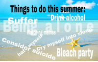 Memes, Party, and Summer: Things to do this summer:  r Drinkalcoho  Suffe  Watching memes  Consider suicide  c party  haCry myself into sleep