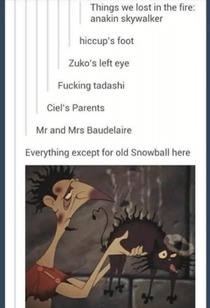 I'm still crying over Tadashi 😭: Things we lost in the fire:  anakin skywalker  hiccup's foot  Zuko's left eye  Fucking tadashi  Ciel's Parents  Mr and Mrs Baudelaire  Everything except for old Snowball here I'm still crying over Tadashi 😭