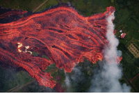 Memes, Paradise, and Common: Think you can outrun lava? When the Democratic Republic of Congo's Mount Nyiragongo erupted in 1977, its lava flowed at speeds up to 40 mph. Elevation and the steepness of the volcano slopes factor into the rate at which lava travels. The more common flows typical of Hawaii's shield volcanoes with gently sloping slides travel at a more sluggish speed. In the recent eruption of Hawaii's Kilauea volcano this past May, the US Geological Survey recorded lava creeping towards the nearby Leilani Estates at 13 feet per hour. volcano lava hawaii nature science 📷 Bruce Omori-Paradise Helicopters