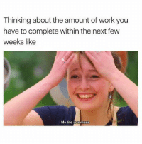 I'm screwed (@memes): Thinking about the amount of work you  have to complete within the next few  weeks like  My life is a mess I'm screwed (@memes)