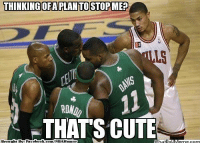 D-Rose is D-Man!