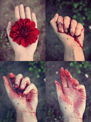 """thinktwicetrue:   """"Be like the flower that gives itsfragrance to even the hand that crushes it."""" - Imam Ali (a)  The symbolism though… This is so powerful… : thinktwicetrue:   """"Be like the flower that gives itsfragrance to even the hand that crushes it."""" - Imam Ali (a)  The symbolism though… This is so powerful…"""