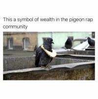 Community, Funny, and Rap: This a symbol of wealth in the pigeon rap  community LIL PIGEON69