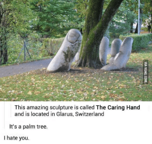 Memes, Http, and Switzerland: This amazing sculpture is called The Caring Hand  and is located in Glarus, Switzerland  It's a palm tree.  I hate you. The palm tree via /r/memes http://bit.ly/2Dzfh5G