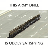 This human domino effect is mind blowing! 😲: THIS ARMY DRILL  IN THE  IS ODDLY SATISFYING This human domino effect is mind blowing! 😲