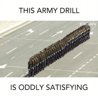 This human domino effect is mind blowing: THIS ARMY DRILL  ME  IS ODDLY SATISFYING This human domino effect is mind blowing