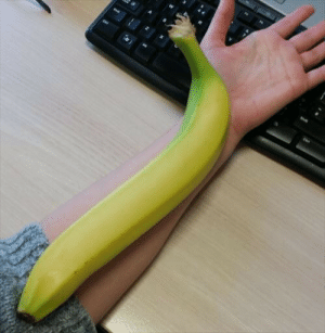 This banana needs a banana for scale….: This banana needs a banana for scale….
