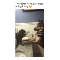 Memes, 🤖, and Cat: This battle will never stop  being funny Why's the cat seam so serious😂 Tag a friend Follow us @laugh.r.us