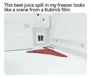 It's a Mystery: This beet juice spill in my freezer looks  like a scene from a Kubrick film: It's a Mystery