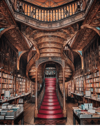 9gag, Memes, and Portugal: This bookstore in Portugal is said to have been an inspiration for JK Rowling! Follow @voyaged for more adventures | By @joethommas - 9gag voyaged