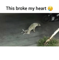 This broke my heart WatchTillTheEnd can't believe I witnessed this 😭 Ma heart... Ma soul...