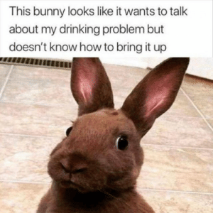 Bunny Know My Problem: This bunny looks like it wants to talk  about my drinking problem but  doesn't know how to bring it up Bunny Know My Problem
