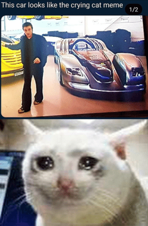 crying cat: This car looks like the crying cat meme  1/2