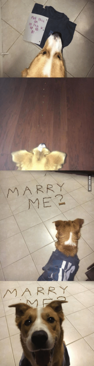 OMG, he said yes!: this  Ck  up  MARRY  ME2  MARRY OMG, he said yes!