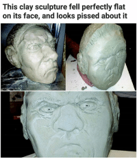 Memes, 🤖, and Mud: This clay sculpture fell perfectly flat  on its face, and looks pissed about it Why he 'mud' tho | For more @aranjevi