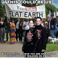 Yo, Earth, and Monkey: THIS COULD BE US  Yo  FLAT EARTH  OU  ube  ONS  BUT YOU STILL BELIEVE YOU ARE AN EVOLVED  CIRCUS MONKEY WALKING ON A BALL