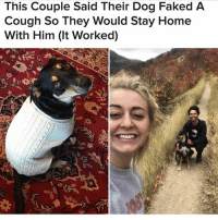 Ive had the hiccups for 5 hours kill me: This Couple Said Their Dog Faked A  Cough So They Would Stay Home  With Him (It Worked) Ive had the hiccups for 5 hours kill me