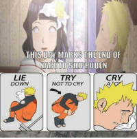 Memes, 🤖, and Naruto Shippuden: THIS DAY MARKS THE END OF  NARUTO SHIPPUDEN  TRY  CRY  LIE  DOWN  NOT TO CRY No more from that day ;-;