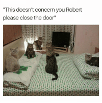 """Ironic, Business, and Mind: This doesn't concern you Robert  please close the door"""" Mind your business Robert"""