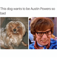 Or is this just a disguise? Austin thinks he's slick huh: This dog wants to be Austin Powers so  bad  My Therapistsays Or is this just a disguise? Austin thinks he's slick huh