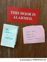 srsfunny:The Door Is Alarmed: THIS DOOR IS  ALARMED.  THE  ND he  les is  SoMeaihat  STARTLED  Kan Aback  you should probably go to TheMetaPicture.com srsfunny:The Door Is Alarmed