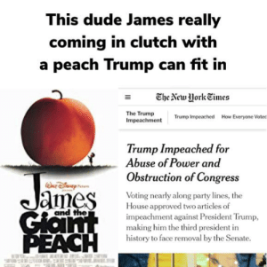 Why they putting this dude in a peach tho: This dude James really  coming in clutch with  a peach Trump can fit in  The New York Times  The Trump  Impeachment  Trump Impeached  How Everyone Voted  Trump Impeached for  Abuse of Power and  Obstruction of Congress  James  Voting nearly along party lines, the  House approved two articles of  impeachment against President Trump,  making him the third president in  history to face removal by the Senate.  and the  Gian  PEACH Why they putting this dude in a peach tho